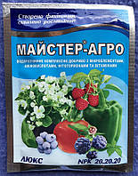 Удобрение Майстер-агро 25 гр ЛЮКС