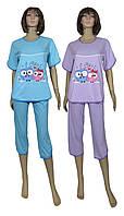Пижама женская летняя с бриджами 03211-1 Regina Owl, р.р.46-54