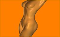Пластиковая форма для мыла формы