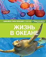 Жизнь в океане. Discovery education