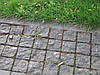 Брусчатка Пилено-колотая