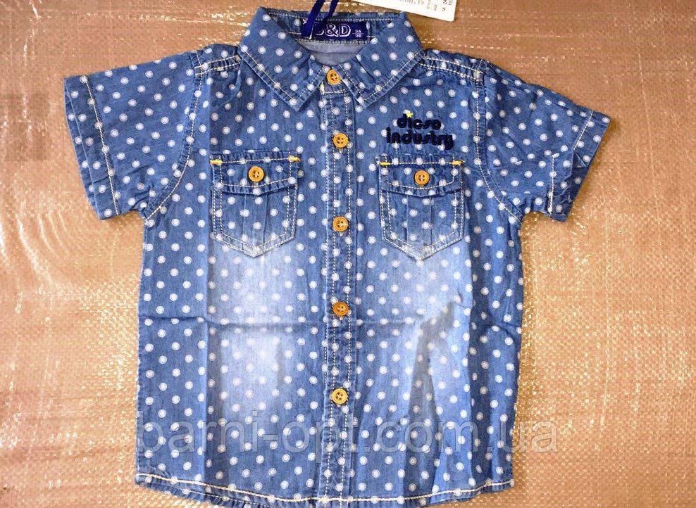 Джинсовые рубашки на мальчика оптом, S&D, 1-5 рр