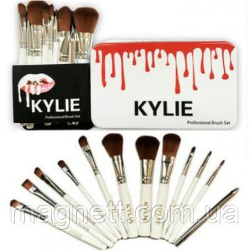 Набір кистей для макіяжу KYLIE Professional Brash Set в металевому кейсі 12 шт.