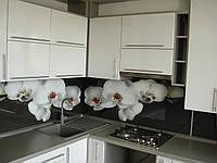 Кухня со столешницей Egger, фото 1