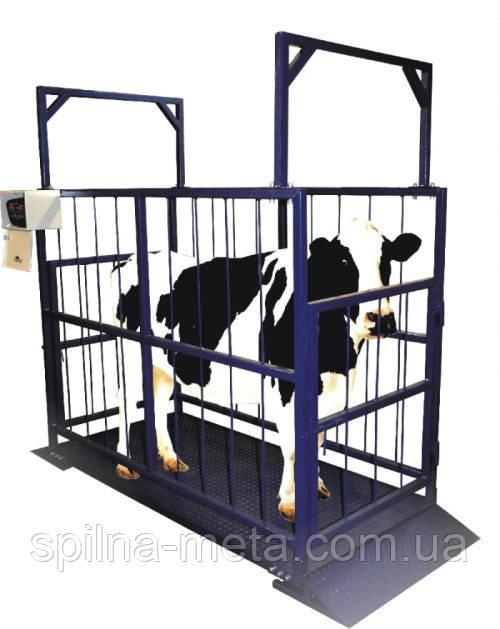 Ваги для зважування тварин до 3000 кг. розмір 4000*2000*1500 мм.