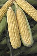 Кукуруза Тамара, 40г