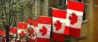 Вывод зарубежных компаний на рынки США и Канады. Помощь стартапам по развитию в Северной Америке.