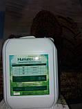 Гумат Калия Натрия для Кукурузы. Биокомплекс для обработки семян и растений кукурузы Сила Жизни., фото 3