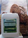 Гумат Калия Натрия для Кукурузы. Биокомплекс для обработки семян и растений кукурузы Сила Жизни., фото 4