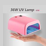 Лампа Ультрафиолетовая Led UV JD 818 - 36 Вт, фото 5