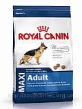 Сухой корм Royal Canin (Роял канин) MAXI ADULT для взрослых собак крупных пород, 15 кг, фото 2