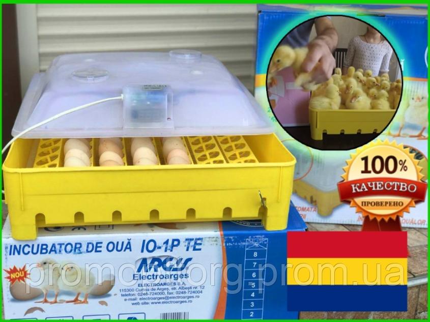 Румынский механический инкубатор Argis на 56 куриных или утиных яиц