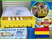 Румынский механический инкубатор Argis на 56 куриных или утиных яиц, фото 1