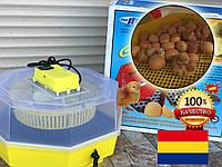 Румынский механический инкубатор Cleo 5D на 60 куриных яиц