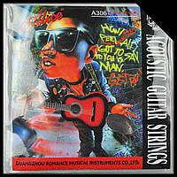 Струны для акустической гитары Alice A306XL (010-047, Посеребренная Медь)