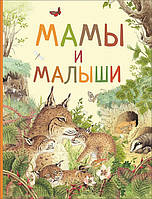 Книга Мамы и малыши Удивительный мир животных Росмэн 9785353087243