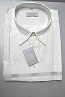 Белая коттоновая тенниска PAN FILO (100% хлопок) (размеры M.L.XL.XXL)