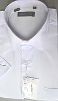 Мужская белая классическая тенниска FERRERO GIZZI (размеры 40.41.42.45+под заказ) R