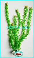 Растение 46см №5