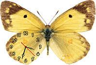"""Красивые фигурные настенные часы """"Бабочка-3"""" 30х45 см"""