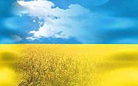 День захисника України.