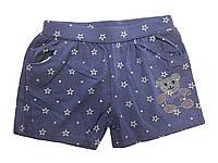 Шорты под джинс для девочек оптом, Sincere, размеры 134-164, арт. LL 2271, фото 1