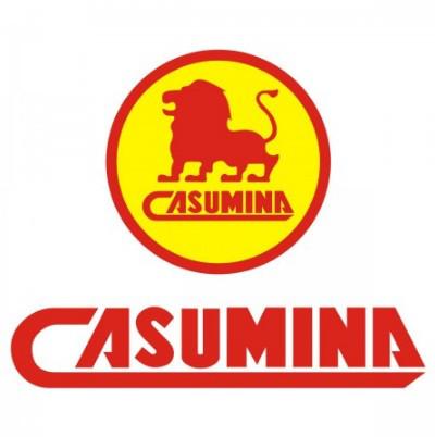 Покрышки для мототехники CASUMINA (Вьетнам)