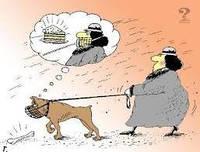 Поведение собак ! О чем думает пес? Очеловечивание собак