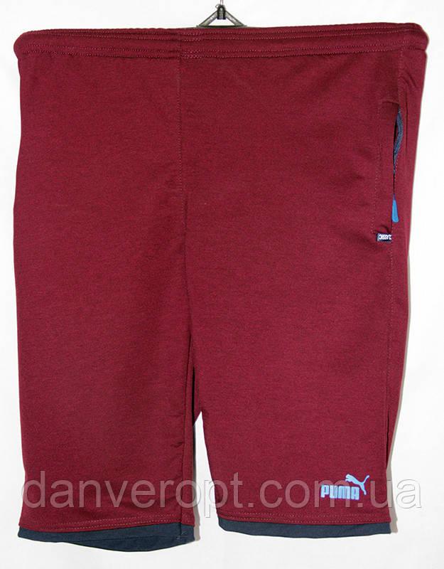 Шорты мужские модные спортивные PUMA размер норма 48-56 купить оптом со  склада 7км Одесса 87866543a4f