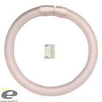 Сигнализатор Кольцо PVC 7 мм под светляк