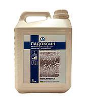 Ладоксин 5л спиртовой антисептик для рук с перекисью водорода и хлоргексидином