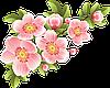"Шаблон для чашек ""Весна - Лето"""