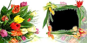 "Шаблон для чашек ""Весна - Лето"" 2"