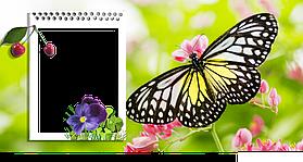 "Шаблон для чашек ""Весна - Лето"" 6"