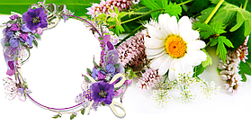 "Шаблон для чашек ""Весна - Лето"" 7"