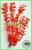 Растение 30см №3