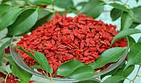 Ягоды Годжи — новый продукт из Тибета.