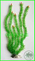 Растение 46см №2