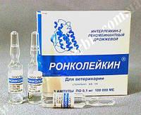 Ронколейкин 100 000 иммуностимулятор для животных, 1 мл - 0,1мг (100 000МЕ) БИОТЕХ, Россия