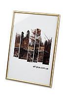 """Фоторамка из пластика """"Золото"""" - для грамот, дипломов, сертификатов, фото, вышивок!, фото 1"""