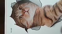 3D наклейки кошки