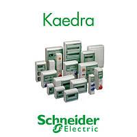 Schneider Kaedra