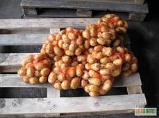 Сетка овощная 40*62см, 20кг , фото 3