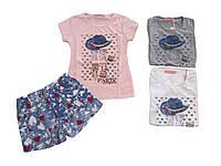 Костюм летний для девочки оптом , размеры 4-12 лет  Sinsere  арт. CJ 1770, фото 1