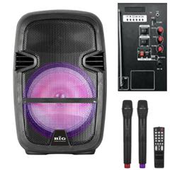 Автономная акустическая система Big BIG110BAT (100Вт)