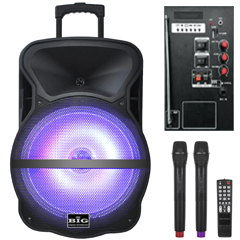 Автономная акустическая система Big BIG200BAT (200Вт)