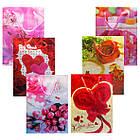 Пакеты Подарочные Пластиковые с Розами HL-E654 17 см * 12 см * 5,5 см (малый), фото 4
