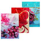 Пакеты Подарочные Пластиковые с Розами HL-E654 17 см * 12 см * 5,5 см (малый), фото 3