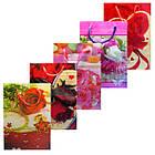 Пакеты Подарочные Пластиковые с Розами HL-E654 17 см * 12 см * 5,5 см (малый), фото 5