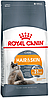 Royal Canin Hair & Skin, 2 кг